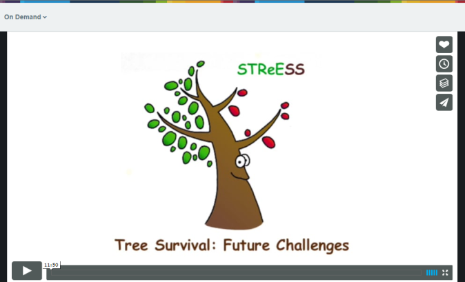 tree survival film